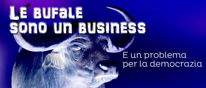 Le bufale sono un business