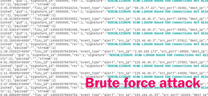 WordPress sotto attacco Brute Force: mai così prima, la campagna è iniziata alle 3 del mattino