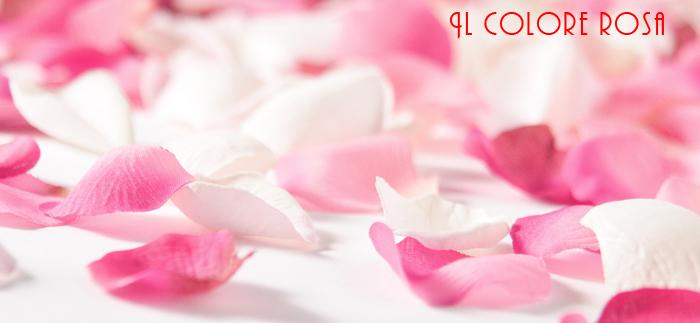Internet facile: usare il rosa nel web design