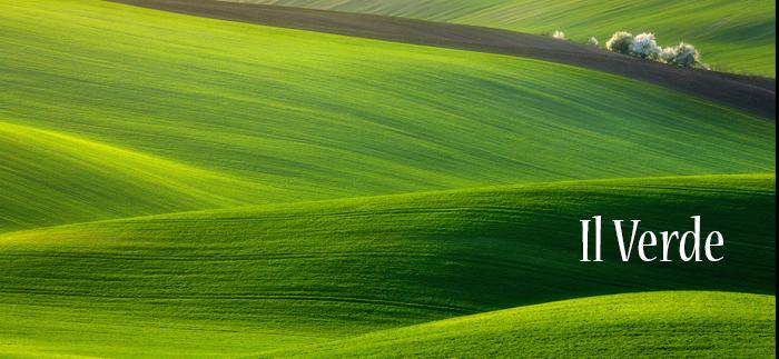 Internet facile: usare il verde nel web design