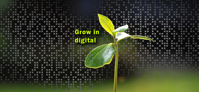 Il progetto Crescere in Digitale – 5.000 nuovi tirocini entro i prossimi tre anni