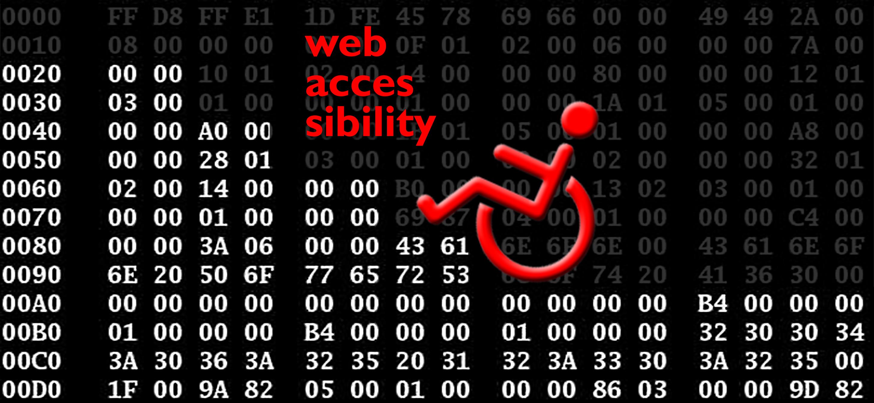 Introduzione alla accessibilità del web