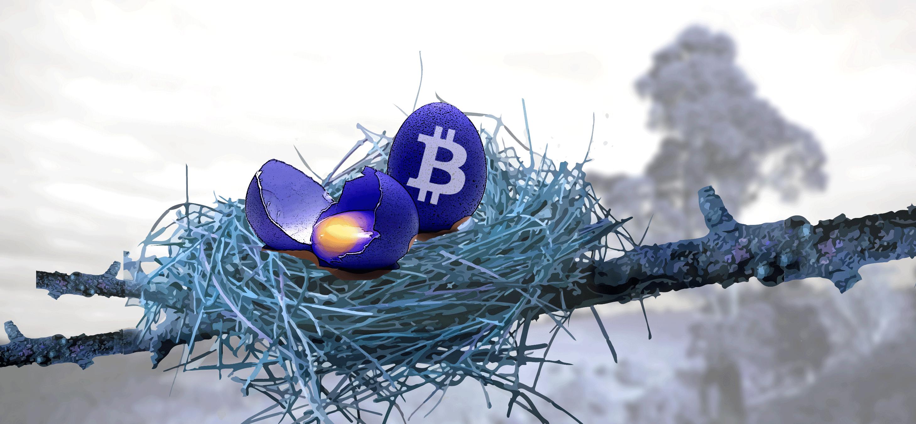 Google, Facebook e Twitter vietano la pubblicità di bitcoin